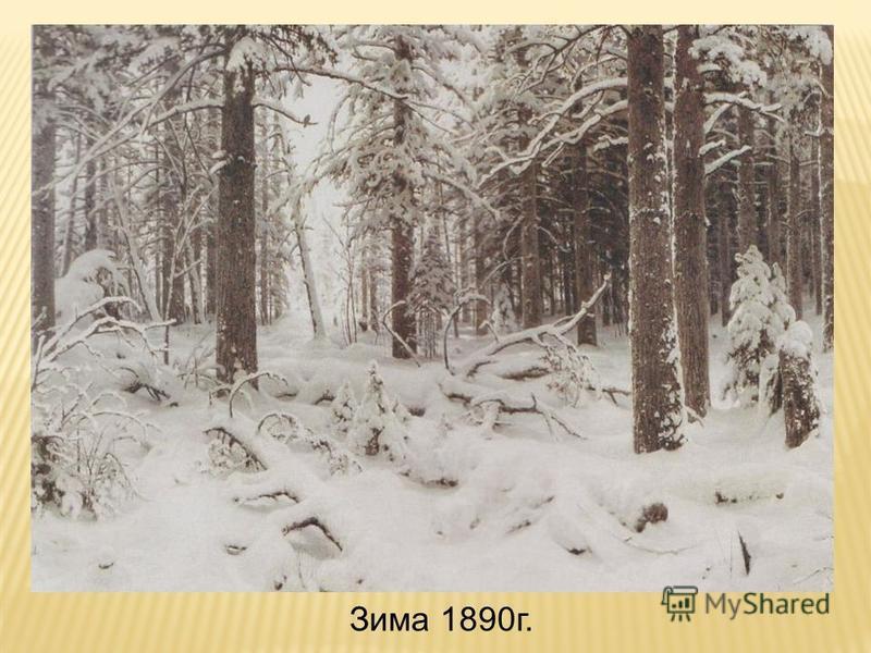 Зима 1890 г.