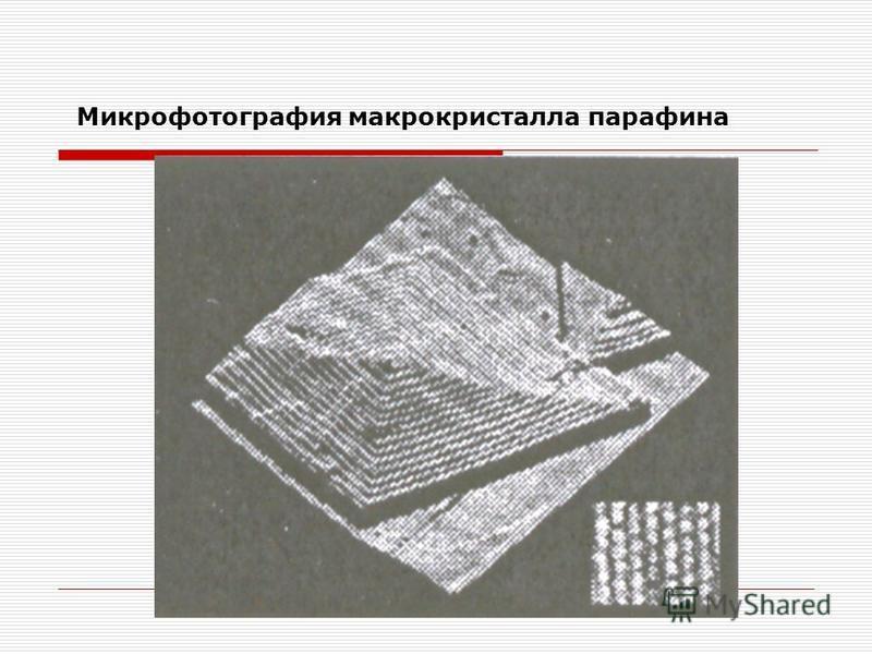 Микрофотография макрокристалла парафина