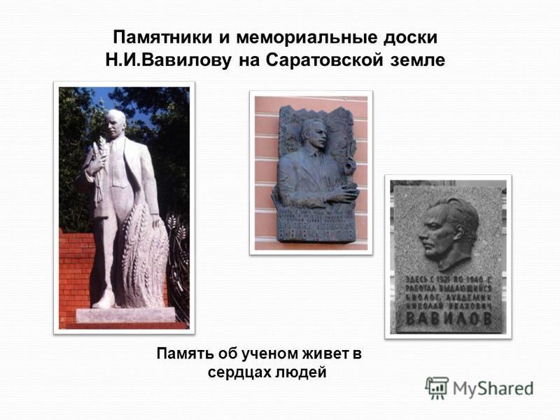 Памятники и мемориальные доски Н.И.Вавилову на Саратовской земле Память об ученом живет в сердцах людей