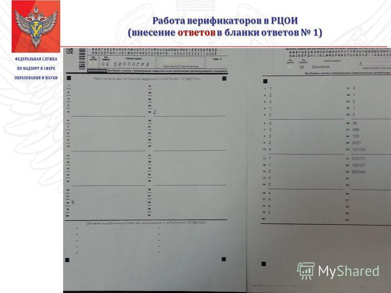 Работа верификаторов в РЦОИ (внесение ответов в бланки ответов 1)