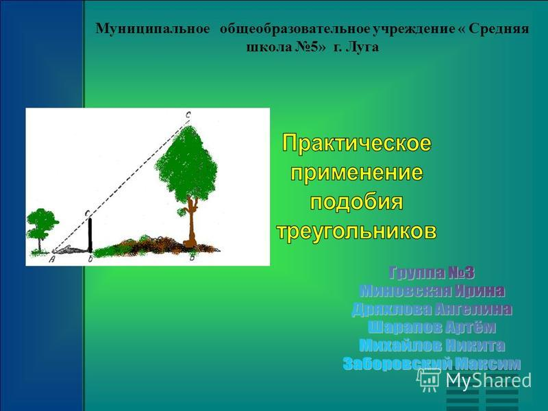 Муниципальное общеобразовательное учреждение « Средняя школа 5» г. Луга