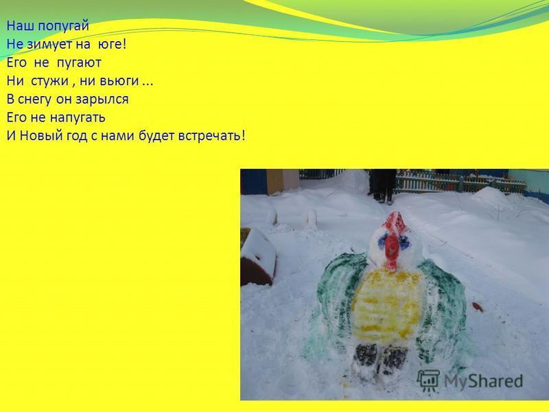 Наш попугай Не зимует на юге! Его не пугают Ни стужи, ни вьюги... В снегу он зарылся Его не напугать И Новый год с нами будет встречать!