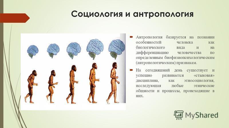 Социология и антропология Антропология базируется на познании особенностей человека как биологического вида и на дифференциацию человечества по определенным биофизиопсихологическим (антропологическим) признакам. На сегодняшний день существует и успеш