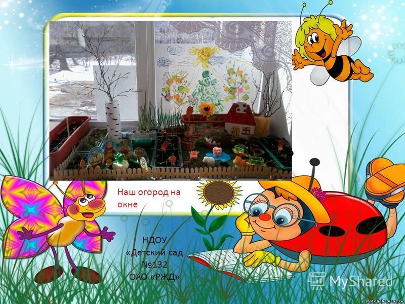Наш огород на окне НДОУ «Детский сад 132 ОАО «РЖД»