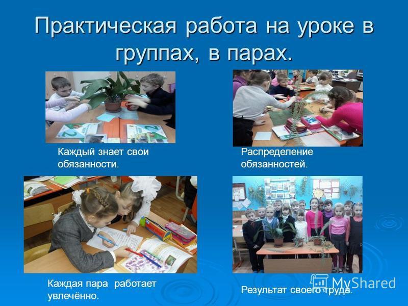 Практическая работа на уроке в группах, в парах. Результат своего труда. Каждая пара работает увлечённо. Каждый знает свои обязанности. Распределение обязанностей.