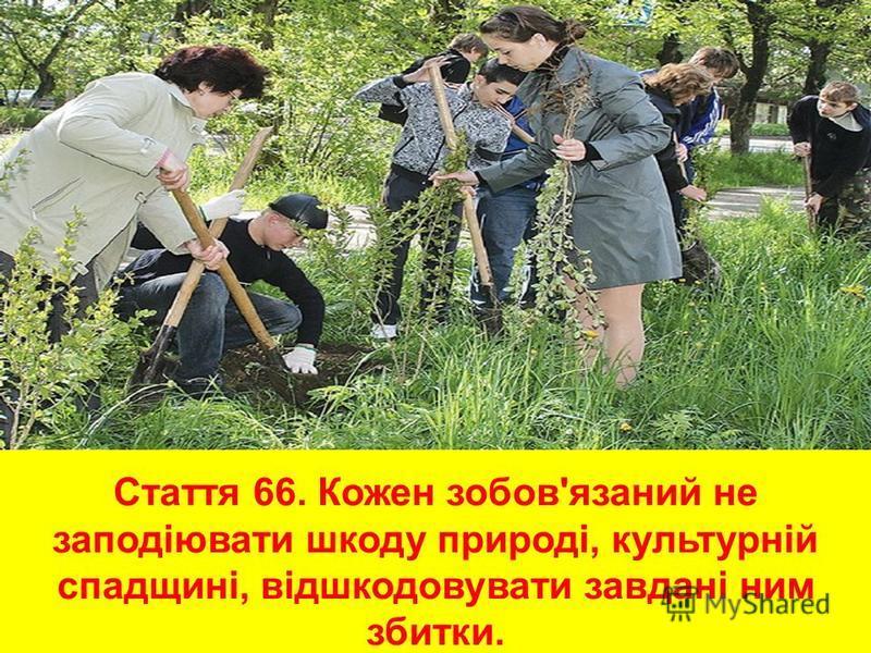 Стаття 66. Кожен зобов'язаний не заподіювати шкоду природі, культурній спадщині, відшкодовувати завдані ним збитки.