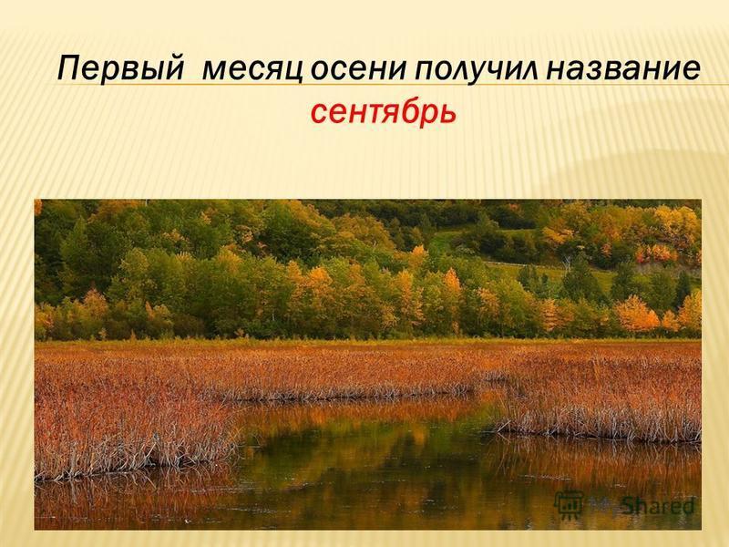 Первый месяц осени получил название сентябрь
