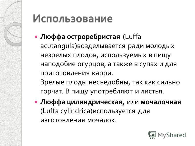 Использование Люффа остро ребристая (Luffa acutangula) возделывается ради молодых незрелых плодов, используемых в пищу наподобие огурцов, а также в супах и для приготовления карри. Зрелые плоды несъедобны, так как сильно горчат. В пищу употребляют и