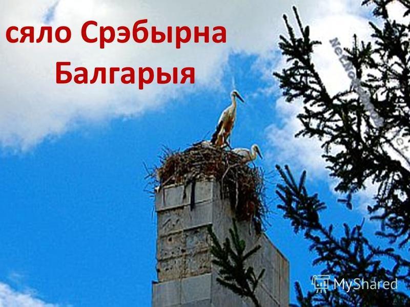 сяло Срэбырна Балгарыя