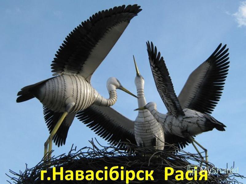 г.Навасібірск Расія