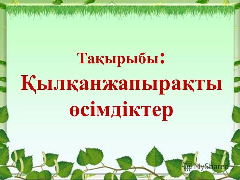 Тақырыбы : Қылқанжапырақты өсімдіктер