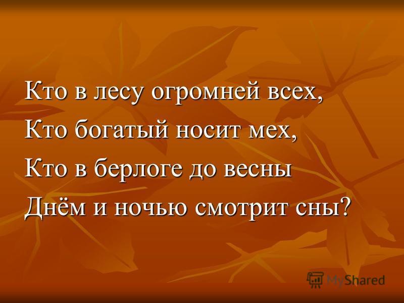 Кто в лесу огромней всех, Кто богатый носит мех, Кто в берлоге до весны Днём и ночью смотрит сны?