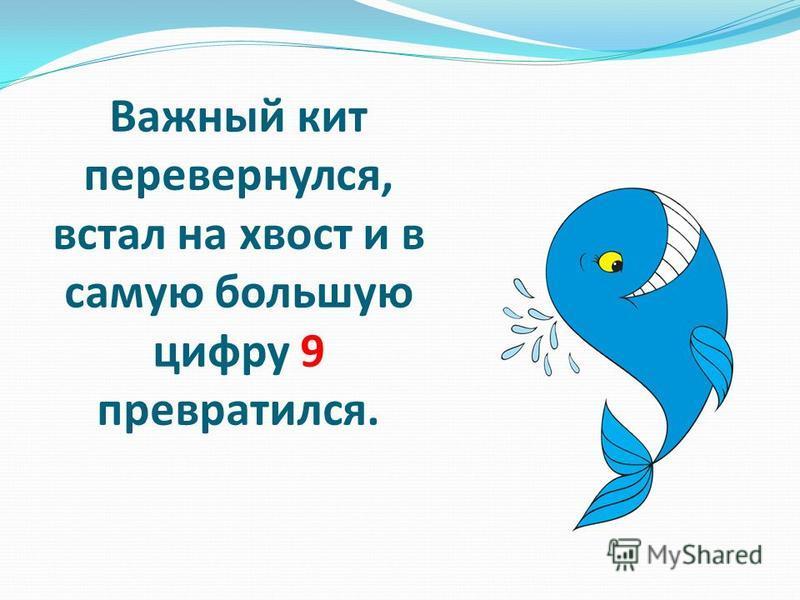 Важный кит перевернулся, встал на хвост и в самую большую цифру 9 превратился.