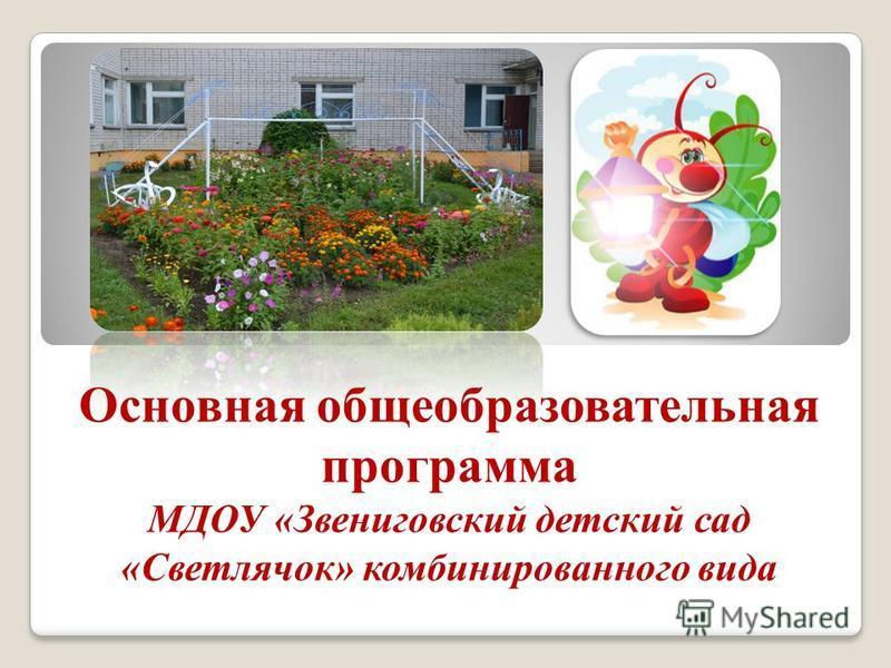 Основная общеобразовательная программа МДОУ «Звениговский детский сад «Светлячок» комбинированного вида