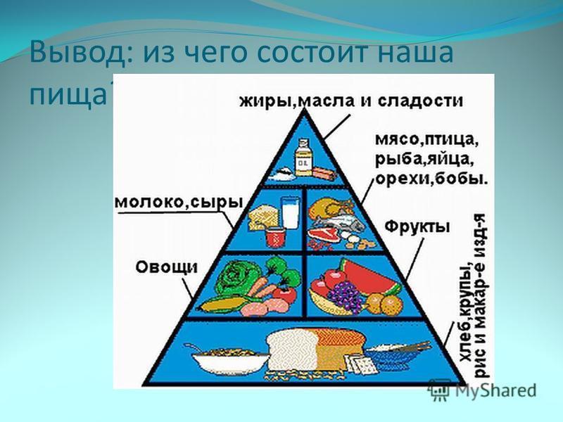 Вывод: из чего состоит наша пища?
