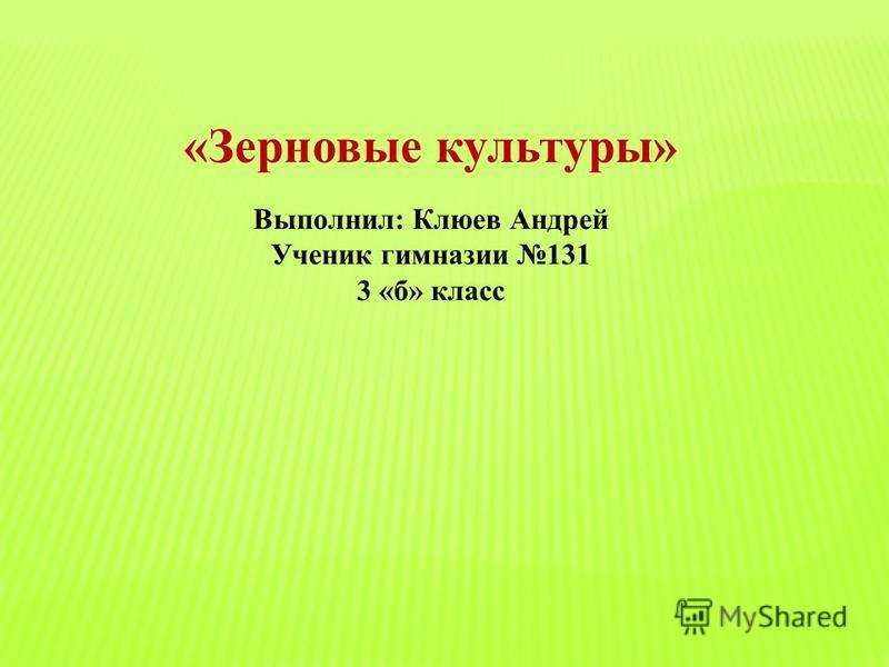 «Зерновые культуры» Выполнил: Клюев Андрей Ученик гимназии 131 3 «б» класс