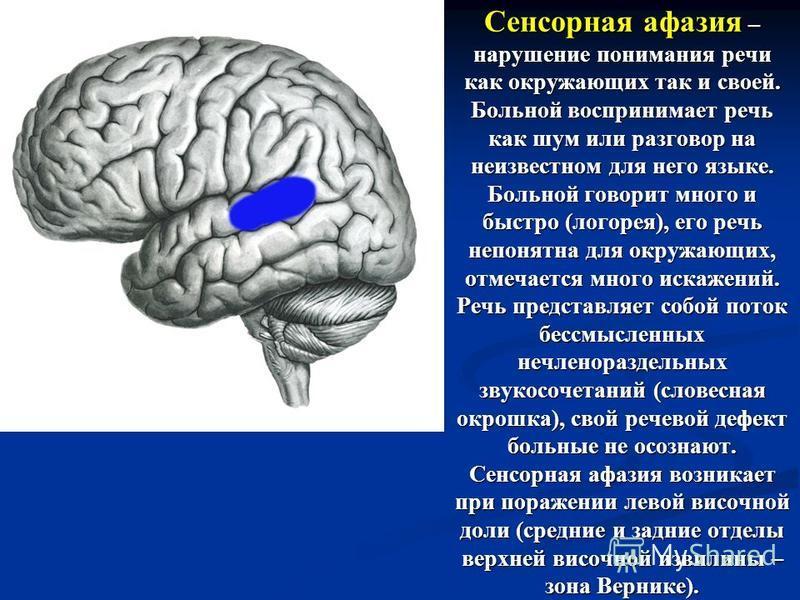 Сенсорная афазия – нарушение понимания речи как окружающих так и своей. Больной воспринимает речь как шум или разговор на неизвестном для него языке. Больной говорит много и быстро (логорея), его речь непонятна для окружающих, отмечается много искаже