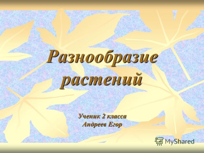 Разнообразие растений Ученик 2 класса Андреев Егор