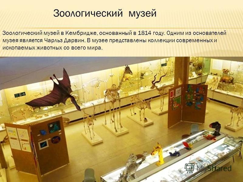Зоологический музей в Кембридже, основанный в 1814 году. Одним из основателей музея является Чарльз Дарвин. В музее представлены коллекции современных и ископаемых животных со всего мира. Зоологический музей
