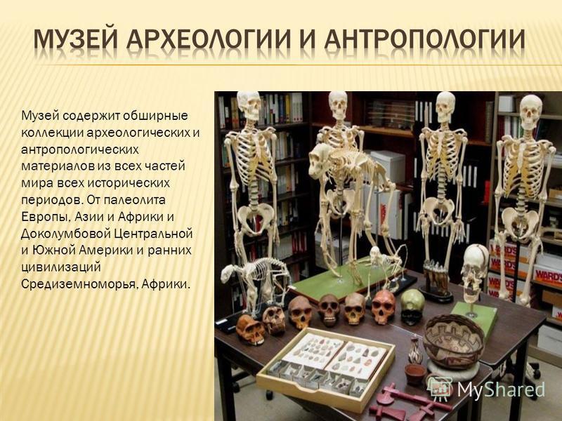 Музей содержит обширные коллекции археологических и антропологических материалов из всех частей мира всех исторических периодов. От палеолита Европы, Азии и Африки и Доколумбовой Центральной и Южной Америки и ранних цивилизаций Средиземноморья, Африк