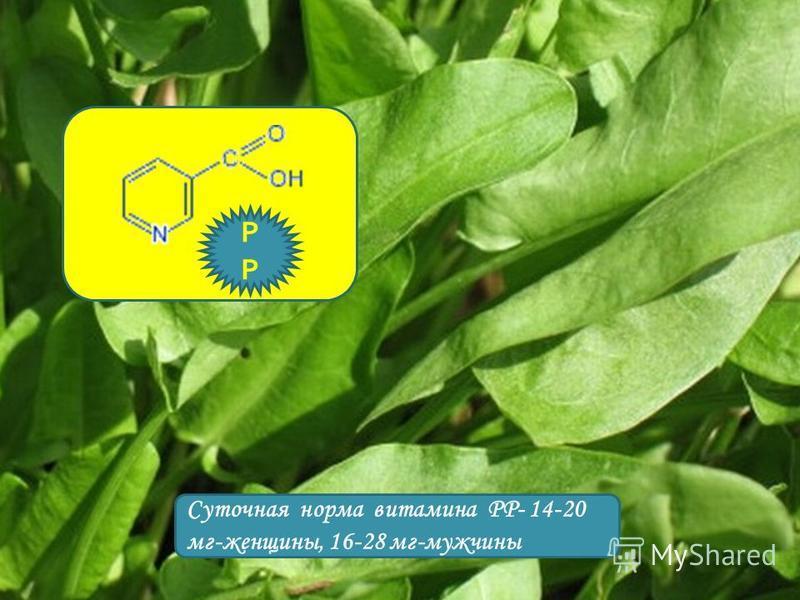 Суточная норма витамина РР- 14-20 мг-женщины, 16-28 мг-мужчины Р