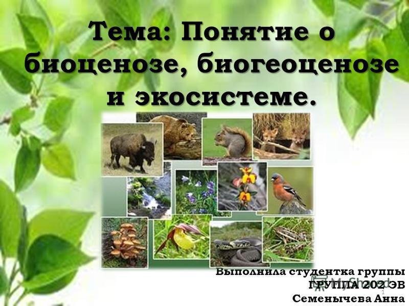 Тема: Понятие о биоценозе, биогеоценозе и экосистеме. Выполнила студентка группы ГРУППА 202 ЭВ Семенычева Анна 1