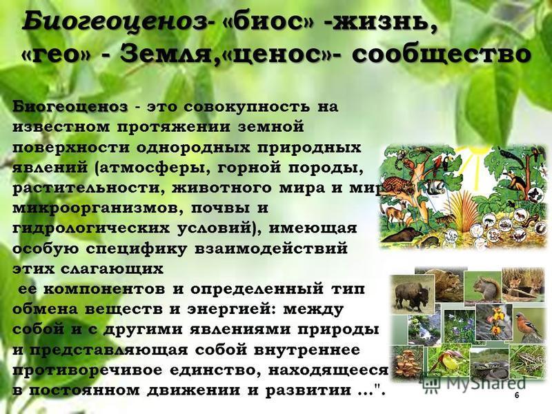 Биогеоценоз- «биос» -жизнь, «гео» - Земля,«ценоз»- сообщество Биогеоценоз Биогеоценоз - это совокупность на известном протяжении земной поверхности однородных природных явлений (атмосферы, горной породы, растительности, животного мира и мира микроорг