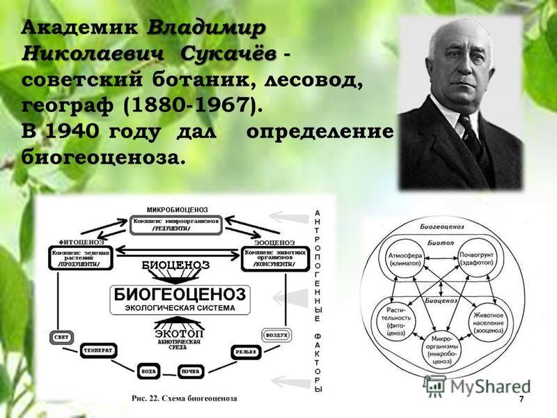 Владимир Николаевич Сукачёв Академик Владимир Николаевич Сукачёв - советский ботаник, лесовод, географ (1880-1967). В 1940 году дал определение биогеоценоза. 7
