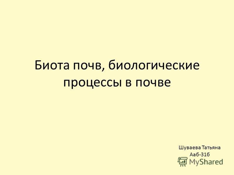 Биота почв, биологические процессы в почве Шуваева Татьяна Ааб-31 б