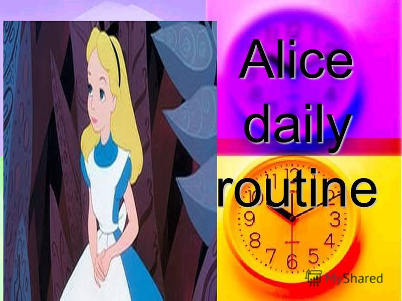 Аlice daily routine