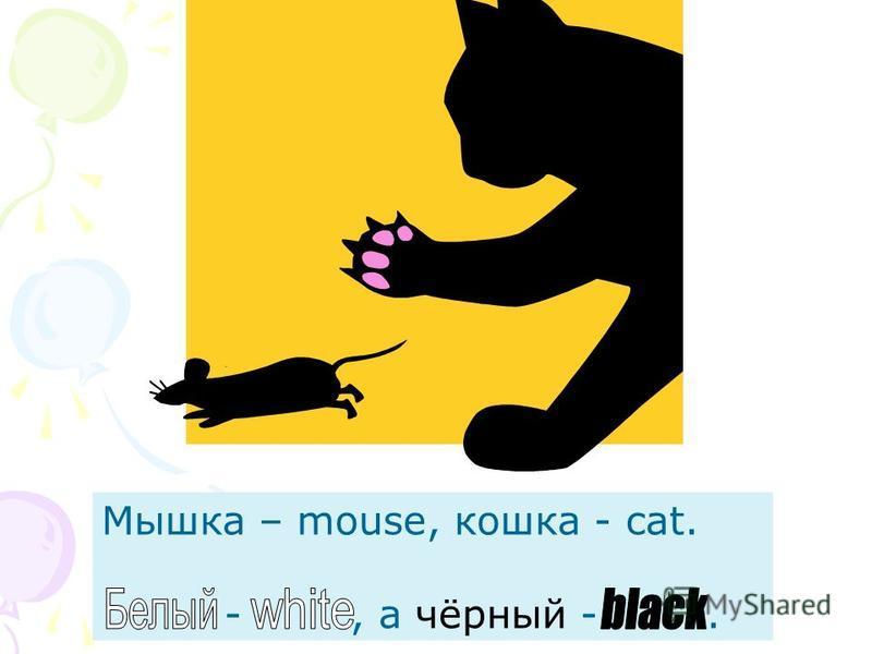 Мышка – mouse, кошка - cat. -, а чёрный -.