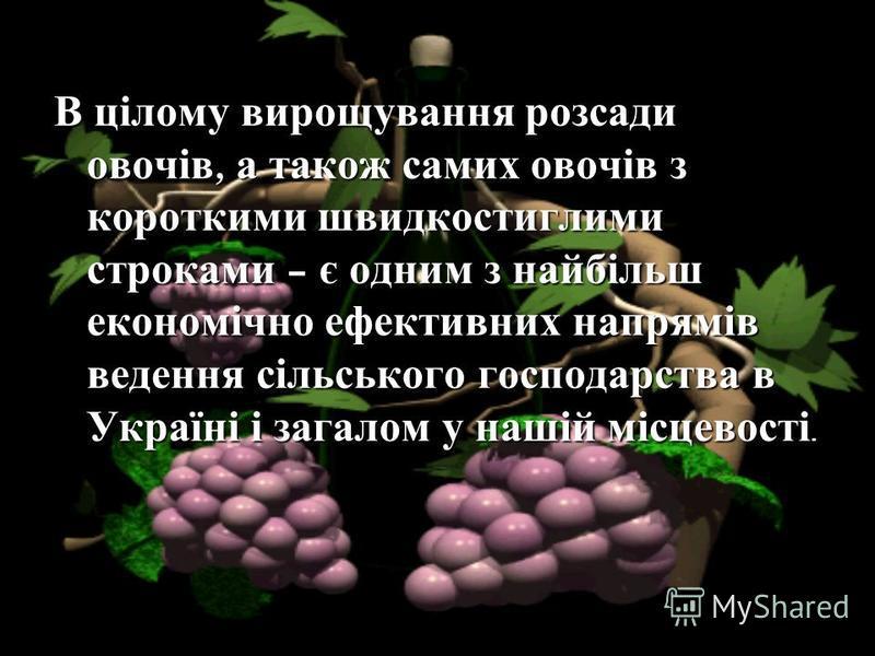 В цілому вирощування розсади овочів, а також самих овочів з короткими швидкостиглими строками – є одним з найбільш економічно ефективних напрямів ведення сільського господарства в Україні і загалом у нашій місцевості.