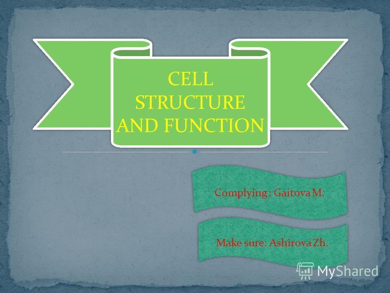 CELL STRUCTURE AND FUNCTION Complying : Gaitova M. Make sure: Ashirova Zh.