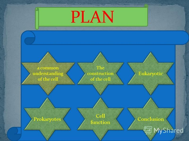 PLAN a common understanding of the cell a common understanding of the cell The construction of the cell Eukaryotic Prokaryotes Cell function Conclusion