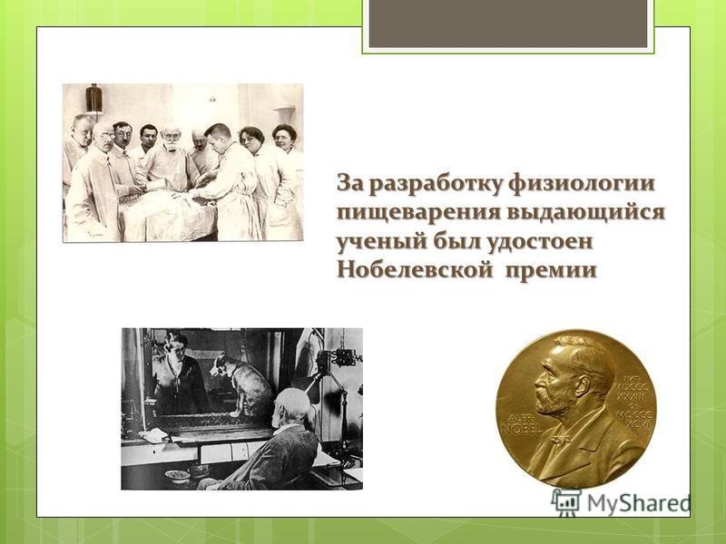 За разработку физиологии пищеварения выдающийся ученый был удостоен Нобелевской премии