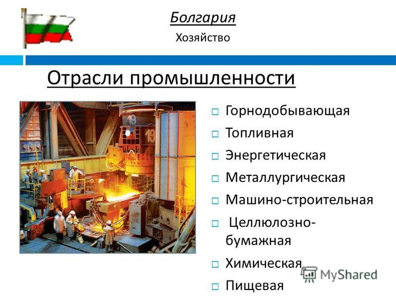 Отрасли промышленности Горнодобывающая Топливная Энергетическая Металлургическая Машино - строительная Целлюлозно - бумажная Химическая Пищевая Болгария Хозяйство