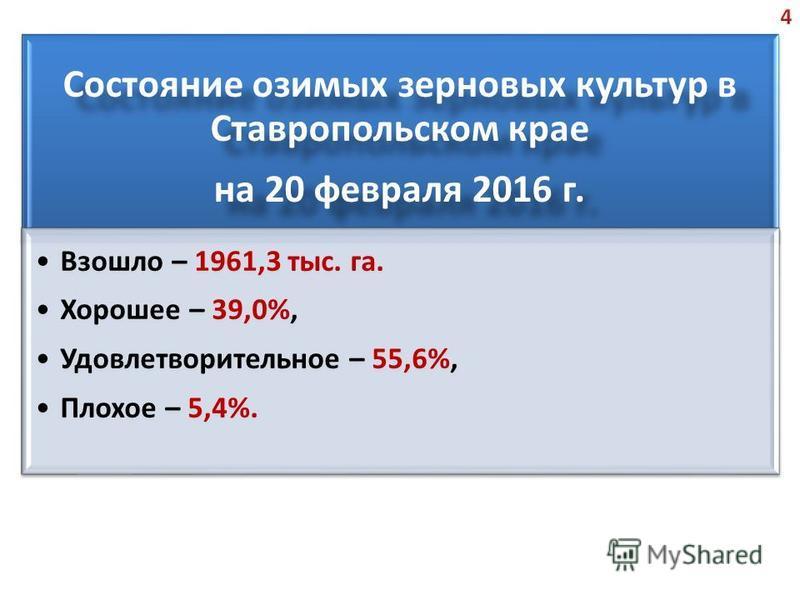 Состояние озимых зерновых культур в Ставропольском крае на 20 февраля 2016 г. Взошло – 1961,3 тыс. га. Хорошее – 39,0%, Удовлетворительное – 55,6%, Плохое – 5,4%.