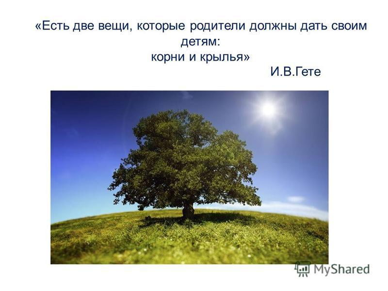 «Есть две вещи, которые родители должны дать своим детям: корни и крылья» И.В.Гете