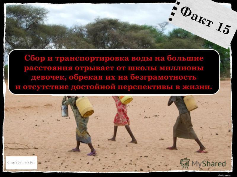 Сбор и транспортировка воды на большие расстояния отрывает от школы миллионы девочек, обрекая их на безграмотность и отсутствие достойной перспективы в жизни. Факт 15