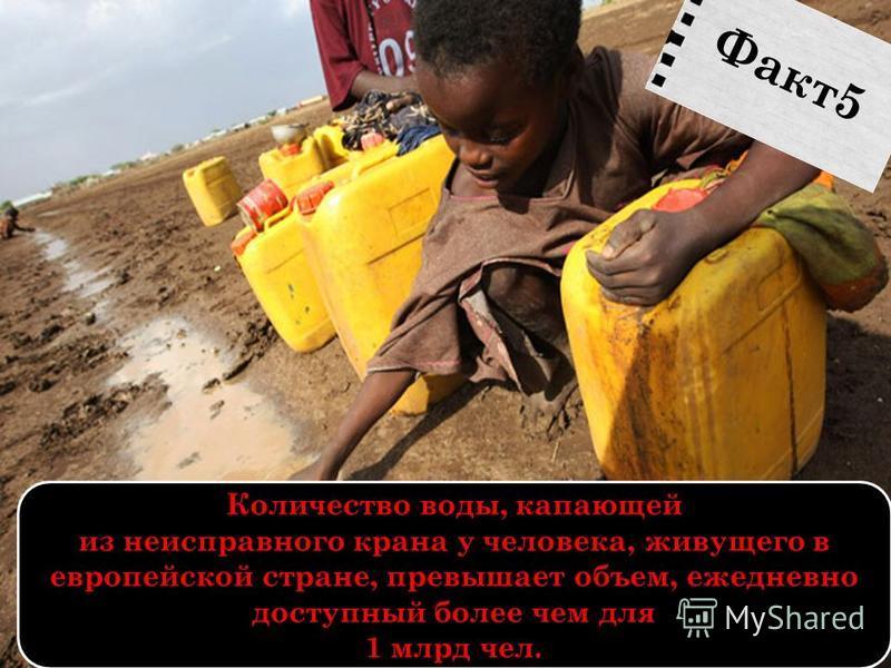 Количество воды, капающей из неисправного крана у человека, живущего в европейской стране, превышает объем, ежедневно доступный более чем для 1 млрд чел. Факт 5