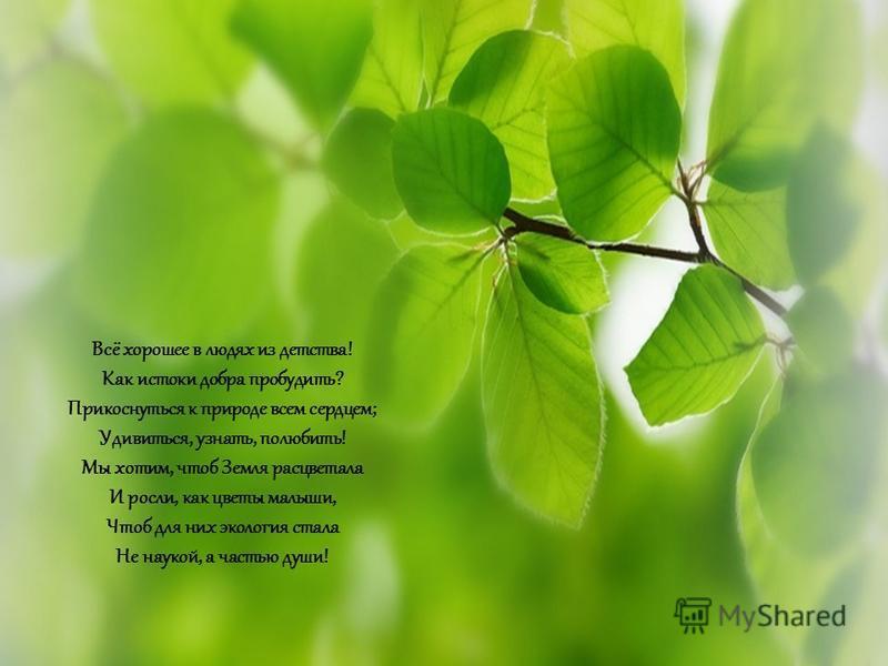 Всё хорошее в людях из детства! Как истоки добра пробудить? Прикоснуться к природе всем сердцем; Удивиться, узнать, полюбить! Мы хотим, чтоб Земля расцветала И росли, как цветы малыши, Чтоб для них экология стала Не наукой, а частью души!