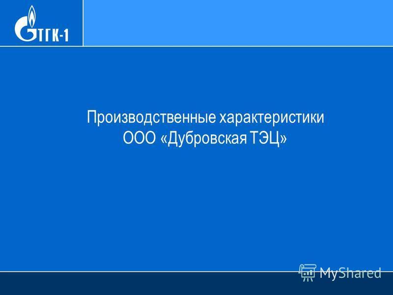 Производственные характеристики ООО «Дубровская ТЭЦ»
