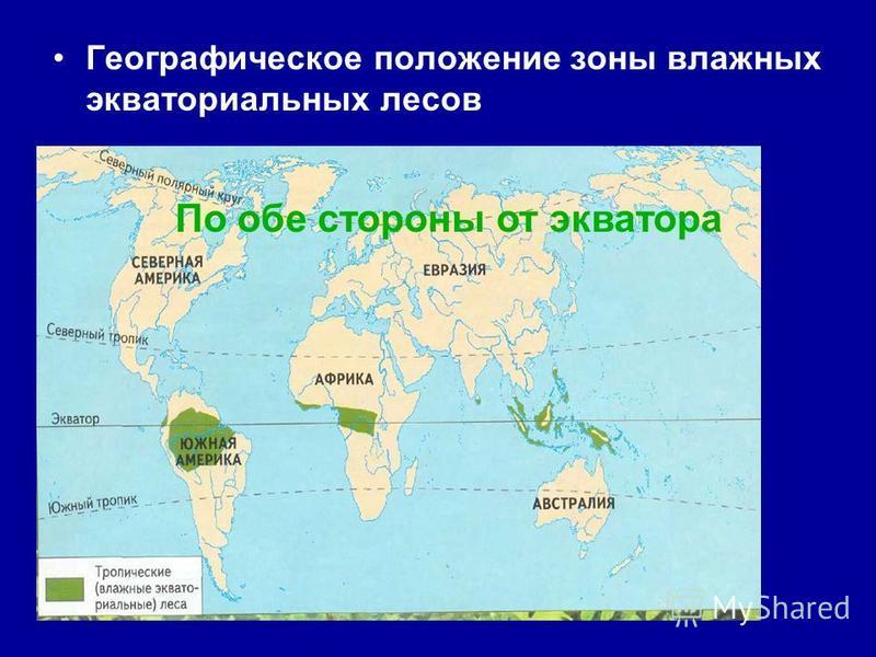 Влажные экваториальные леса Африки называют - ГИВЕЯ