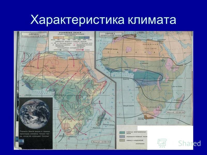Географическое положение зоны влажных экваториальных лесов По обе стороны от экватора