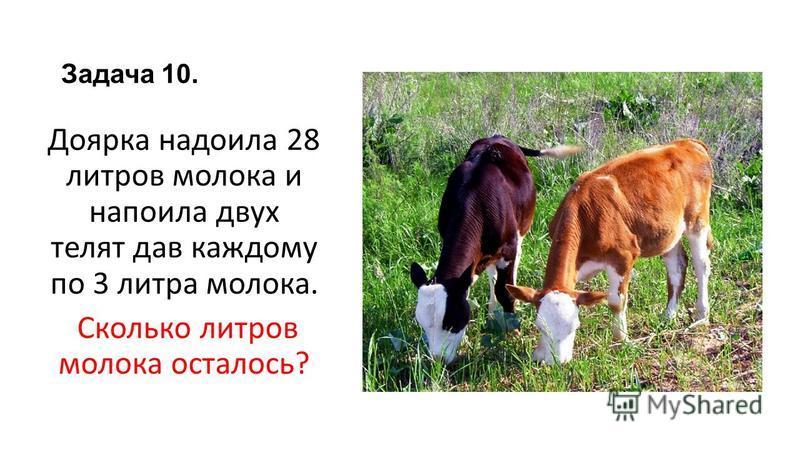 Задача 10. Доярка надоила 28 литров молока и напоила двух телят дав каждому по 3 литра молока. Сколько литров молока осталось?