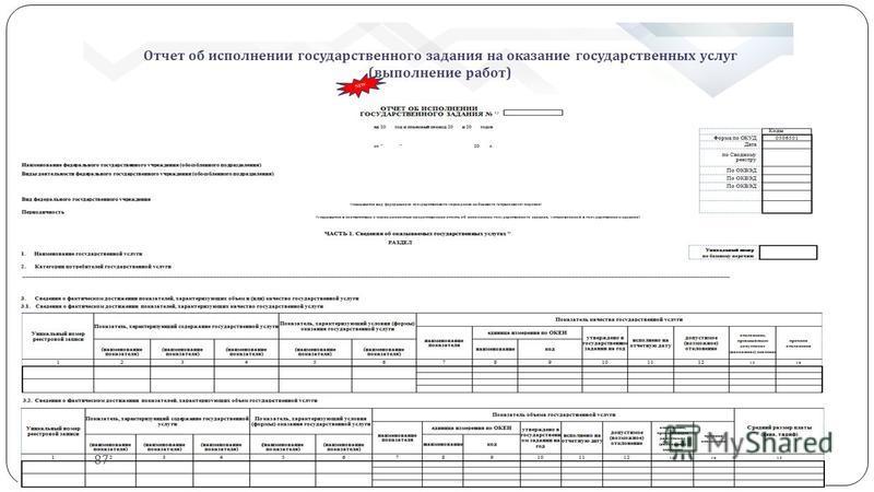 Отчет об исполнении государственного задания на оказание государственных услуг (выполнение работ) NEW 87