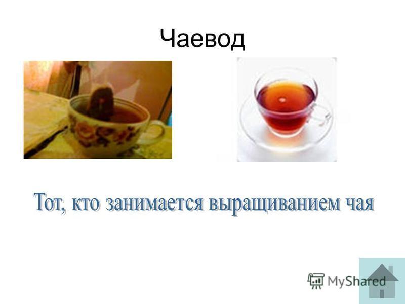 Чаевод