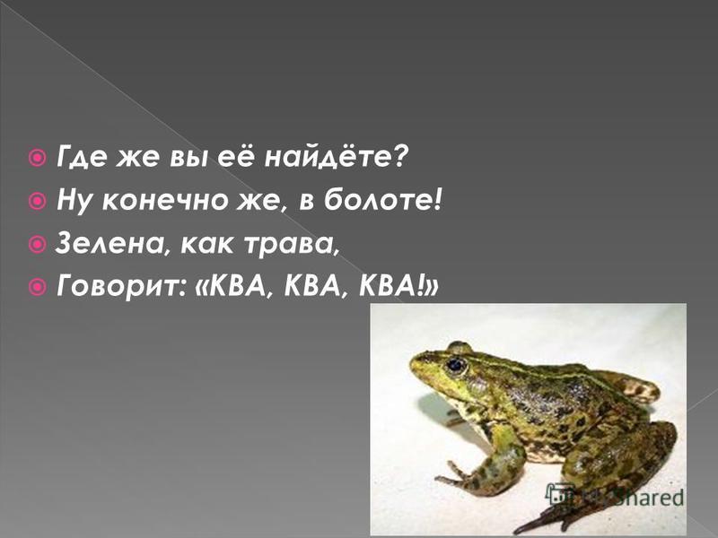 Где же вы её найдёте? Ну конечно же, в болоте! Зелена, как трава, Говорит: «КВА, КВА, КВА!»