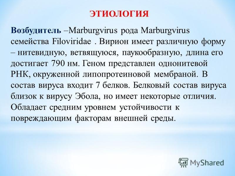 ЭТИОЛОГИЯ Возбудитель –Marburgvirus рода Marburgvirus семейства Filoviridae. Вирион имеет различную форму – нитевидную, ветвящуюся, паукообразную, длина его достигает 790 нм. Геном представлен однонитевой РНК, окруженной липопротеиновой мембраной. В