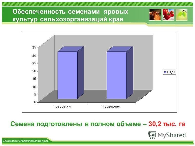 Минсельхоз Ставропольского края Обеспеченность семенами яровых культур сельхозорганизаций края Семена подготовлены в полном объеме – 30,2 тыс. га